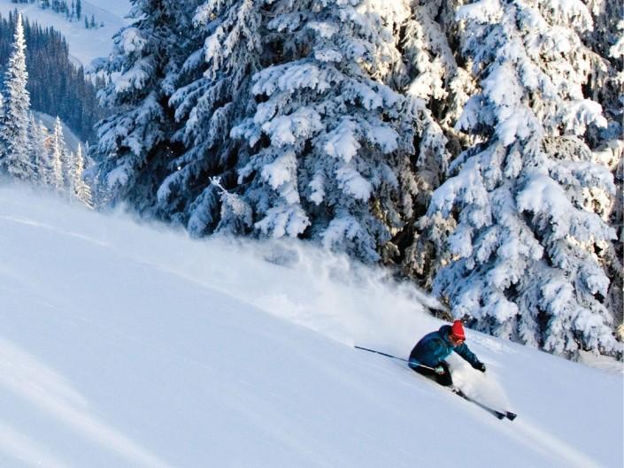 Skimax Holidays